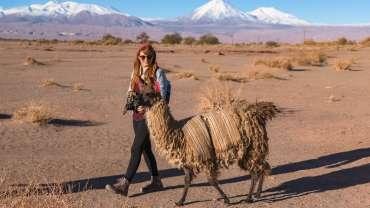 Hotel Jardín Atacama | San Pedro de Atacama | Chile caravana-370x208 Home