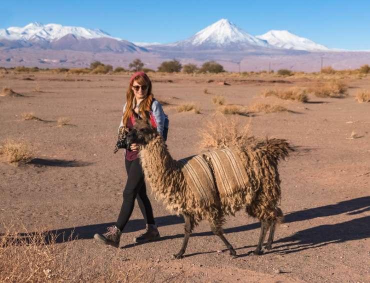 Hotel Jardín Atacama | San Pedro de Atacama | Chile caravana-740x566 Tours